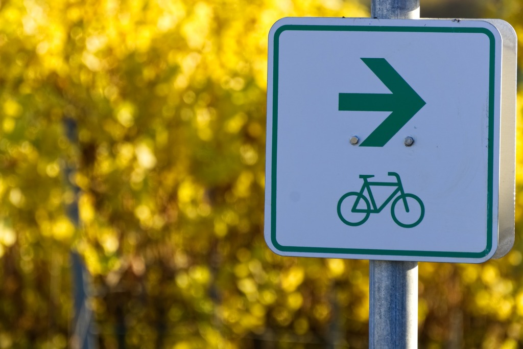 The photograph depicts a bike trail road sign in green and white against a blurry background of yellow fall leaves.  The bike is beneath a green arrow pointing to the right.
