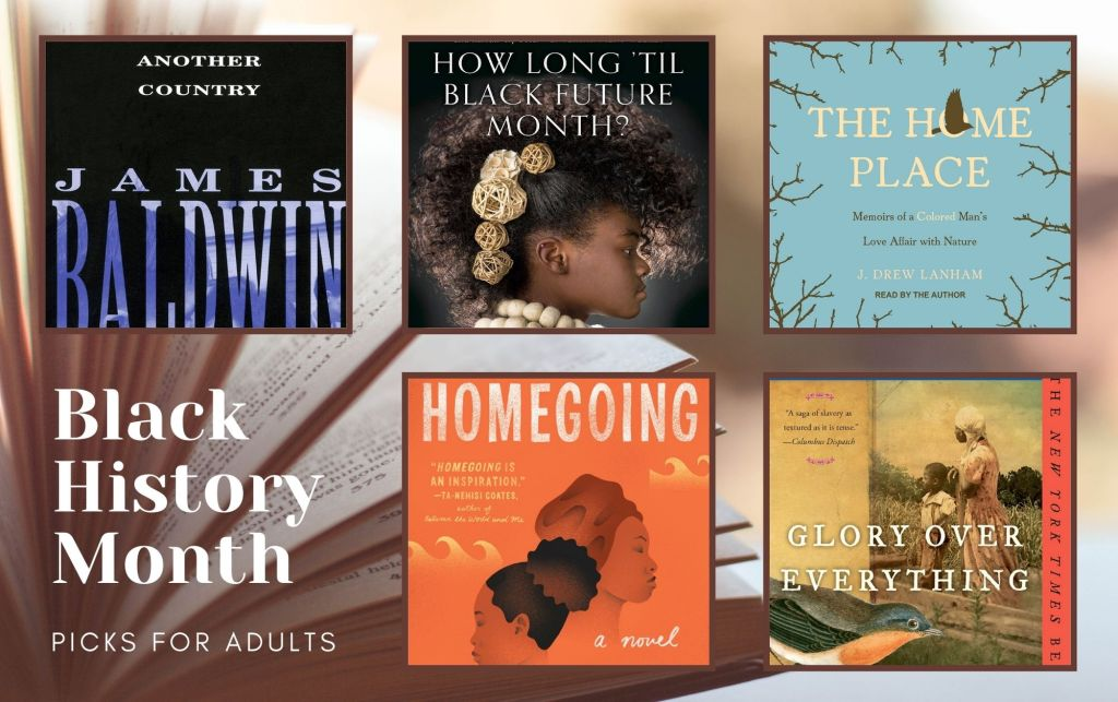 "A collage of five books. Another Country emphasizes the author's name against a black background. How Long ""Til Black Future Month features a Black woman in profile with her hair up and adorned with roses. The Home Place provides the perspective of looking up at a blue sky and bare branches. Homegoing has a an orange background with illustrations of waves and two overlapping profiles of Black women. Glory Over Everything shows a painting of a wman and a shcild standing in a field, with the illustration of robin in the foreground."