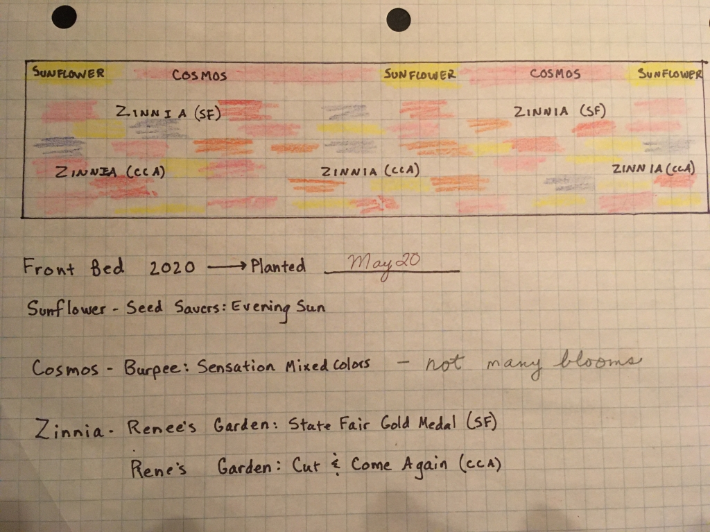 "A photograph of Enchanted Garden Coordinator Ann's gardening plan. This includes a diagram of the garden, with splashes of color in reds, oranges, yellows, pinks, and greys to represent plants and flowers; listed are sunflower, cosmos, and zinnias. Underneath the garden diagram it reads ""Front Bed 2020 - Planted May 20 Sunflower - seed savers: Evening Sun. Cosmos - Burpee: Sensation Mixed Colors - not many blooms. Zinnia - Renee's Garden: State Fair Gold Medal (SF). Zinnia - Renee's Garden: Cut & Come Again (CCA)."""