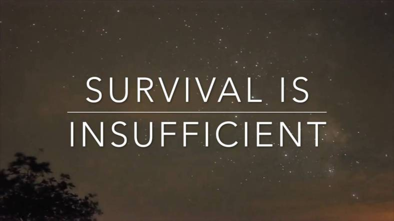 Against a deep night sky and the hint of a tree in the bottom left corner appear the words: Survival is Insufficient, with a narrow rule dividing the lines.