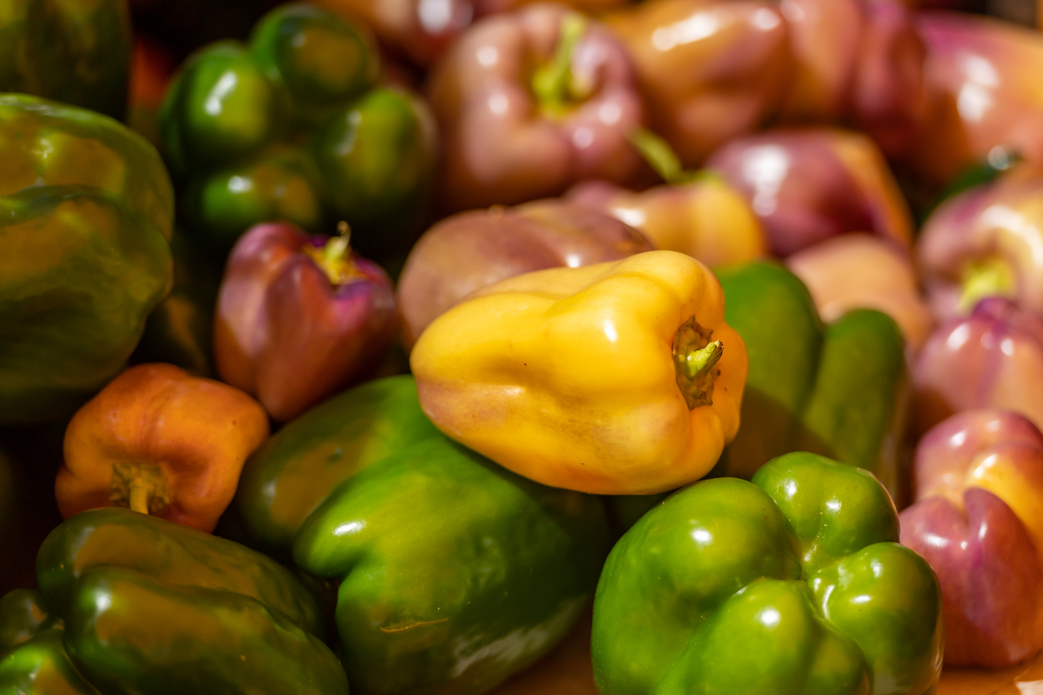 A pile of bell peppers from the Farmers Market, in greens, yellows, and purples.